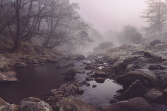 Land of our Fathers (Andrew G Robertson) Tags: wales stream fog mist brecon beacons talybont caerfanell river brook