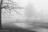 20161228_nva_6092_mist_bw-web (nicolevanas) Tags: alphenaandenrijn fog koude landschap landschape mist mistig nicolevanasfotografie stedelijklandschap winter