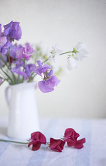 sweetpeas (borealnz) Tags: sweetpea flowers pretty scented jug highkey selectivefocus fallen