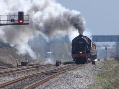 Leander working hard at West Ruislip (rcarpe2) Tags: train steam leander centenary ruislip 5690
