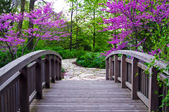 The Bridge to Spring (WisDoc) Tags: bridge wisconsin canon spring searchthebest madison botanicalgardens olbrich payitforward wisdoc gtaggroup