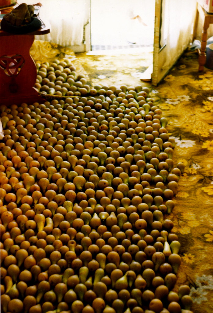 Pear-skin rug