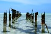 * (let's fotografar) Tags: ocean praia beach mar interestingness cuba cayolargo cayorico