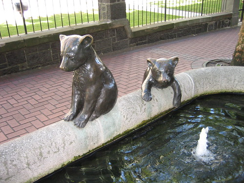 bears in the fountain