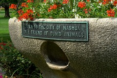 hmph...some friend (Ronny H) Tags: friend newhampshire planter cistern 03060 stupidpets nashuanh wateringtrough greeleypark theshire drinkthis bequest youcanleadahorsetowater dumbanimals