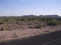 Hermosillo Messico viaggio nel deserto