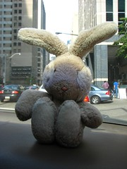 Friday 5pm Traffic ARgh (LexnGer) Tags: toronto ontheroad roadmaster bloggedonunsweetenedca leavingtoronto travelbunny