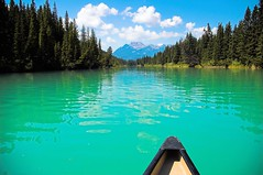 Canoeing on the Bow in Banff (under the influence of dub) Tags: canada green interestingness alberta banff canoeing bowriver bluegreen lookatthatgreen itreallyisthat ysplix greencontest