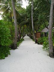 IMG_0291 (thebadpete) Tags: honeymoon maldives banyantree