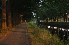 Evening walk (rogiro) Tags: road trees light summer sun tree history water freeassociation beautiful evening canal hall heaven path canals lane dreamy avenue dieren goethe summerevening eerbeek wilhelmina 111v1f apeldoornskanaal apeldoorns
