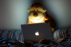 Monkey Laptop