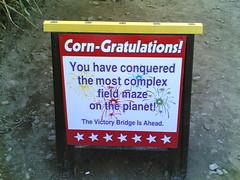 Corn-Gratulations!