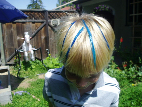 The Great Hair-Dyeing of August 2006