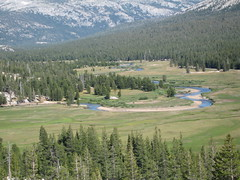 Tuolumne Meadows shot from top of pothole dome (jendarling) Tags: meadows tuolumne 8906