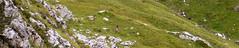 rifugio Mulaz 2560 mt- from Falcade-21-8-2006 (bushpig [goph51]) Tags: italy alps montagne trekking pat pale campanile alpi montagna dolomites dolomiti cima lau bosco rifugio marmolada arrampicata falcade cime ghiacciaio sanmartino campanili casera goph51 lagazuoi tofane sentieri focobon paneveggio mulaz campido lastei zopel pleasedonatewwwgoph51com