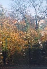 Autumn in Luxemburg