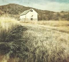 locked doors (jssteak) Tags: canon t1i barn colorado grass snow morning vintage foothill