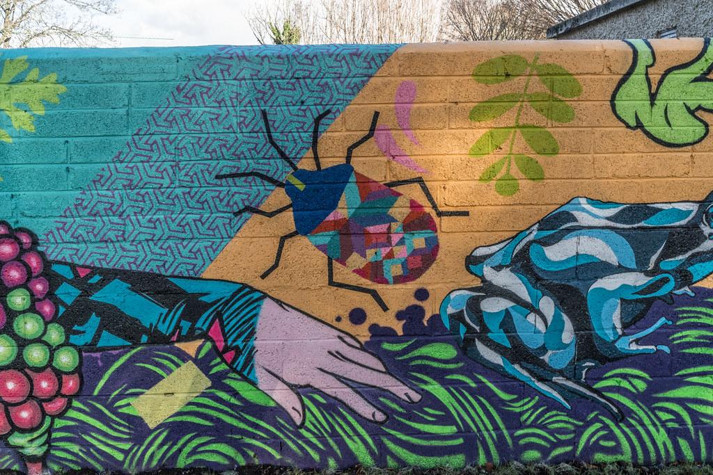 NEW STREET ART AND NEW TEAROOMS [HERBERT PARK DUBLIN]-124051