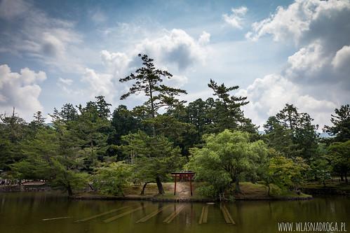 Park niedaleko świątyni Todaiji