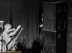 Adil-Guedes-fotografia-contemporanea-espetaculo-show-palco-Brazil-Rio-de-Janeiro-Circo-Voador-Somos-todos-Amarildo-Caetano-Veloso-musica-popular-brasileira-MPB-tropicalismo-rock- psicodelico-rock-folk-bossa-nova (adilguedes) Tags: show brazil brasil riodejaneiro photography folk catalog fotografia diversos bossanova contemporaryphotography espetculo circovoador psychedelicrock tropicalismo fotografiacontempornea showphotography rockpsicodlico fotografiadeespetculo adilguedes somostodosamarildo