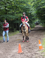 Doorn (Steenvoorde Leen - 2.3 ml views) Tags: horses horse jumping cross doorn pferde pferd reiten manege paard paarden springen 2015 utrechtseheuvelrug sgw arreche manegedentoom