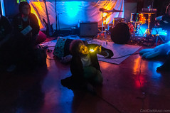 20151002-DSC01875 (CoolDad Music) Tags: asburypark asburylanes superdad brickmortar gimmedrugs
