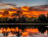 Fire in the Sky (DonMiller_ToGo) Tags: sunset sky lake reflections landscape florida sunsets g5 skyscapes hdr cloudporn goldenhour fireinthesky skycandy cloudsonfire 5xp hdrphotography 5exposures millerville sunsetmadness sunsetsniper