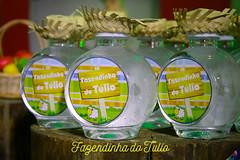 FAZENDINHA DO TULIO 2015 FINAL-27 (agencia2erres) Tags: aniversario 1 infantil festa ano fazenda fazendinha