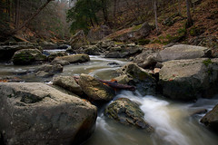 Twenty Mile Creek (Thankful!) Tags: longexposure creek stream salmon jordan brook salmonrun niagaraescarpment twentymilecreek jordanstation twentyvalley