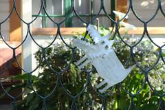 Shut the Gate (Home Land & Sea) Tags: newzealand dog sign gate nz pointshoot handwritten sonycybershot hawkesbay wholetthedogsout shutthegate haumoana dsch3 homelandsea