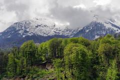 Krasnaya Polyana (Alexxx1979) Tags: mountains spring russia may 2015 россия весна горы май krasnayapolyana краснаяполяна краснодарскийкрай krasnodarkrai
