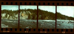 Yellowstone National Park, Wyoming (pumcus) Tags: park film canon cross ct yellowstone 100 process agfa precisa demic exired penorama