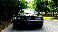 Drakes '77 T/A