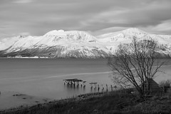 And the sky is a hazy shade of winter (OR_U) Tags: longexposure winter sea sky blackandwhite bw mountain snow seascape tree ice norway clouds landscape pier blackwhite hut fjord oru schwarzweiss paulsimon troms mountainscape 2015