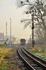MBxd2-216 (ronnie861) Tags: diesel poland gauge narrow kolej skpl mbxd2 lokalna pleszew kowalew pleszewska mbxd2216
