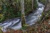 2015-07757 (jjdun7) Tags: water oregon creek forest river landscape waterfall scottsmills