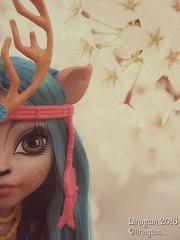 (Linayum) Tags: isidawndancer mh monster monsterhigh mattel doll dolls muñeca muñecas toys juguetes linayum