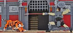 Into the Arena (W. Navarre) Tags: lego scene gladiator achilles troy portcullis gate stoen stone statue tiger siberian spear shield