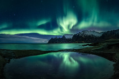 Senja Aurora Reflection Frenzy (hpd-fotografy) Tags: arctic auroraborealis dragonsteeth northernlights norway scandinavia senja beach cold dramatic light longexposure mountain night north reflection seascape sky snow stars water wideangle winter