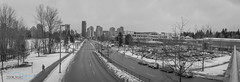 IMG_0919-Pano (mariajensenphotography) Tags: panorama coquitlam lafarge lake outdoors winter snow ice black white buildings city roads