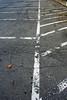 Alignement (ETt_) Tags: lines parking concret alsphate paint white grey leave leaf texture grass