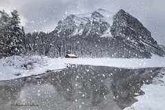 Christmas Card from Lake Louise (Margarita Genkova) Tags: winter snow snowflakes reflection lake louise alberta mountain ice cabin trees lonely christmas card