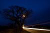 Traffic Trails past Ketts Oak (Jacob Kenworthy) Tags: light traffictrails landscape land le lights longexposure tree kettsoak wymondham