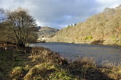 Down by the Riverside (magaroonie) Tags: rivertay dunkeld perthshire
