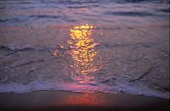 Shore (taotti_01) Tags: olympus om2 fujifilm provia100f film 135 湘南 海 sea ocean japan