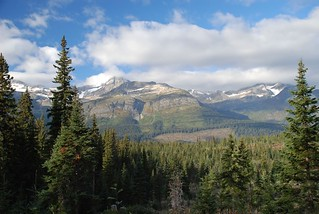 British Columbia Wolf Hunt & Big Game 28
