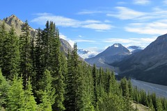 A River Begins (Patricia Henschen) Tags: banff banffnationalpark nationalpark icefieldsparkway park parks parcs parkscanada peyto lake bowsummit peytolake mistayariver glacier creek rockflour mountains mountain canadian canadianrockies rockies rocky rockymountains clouds