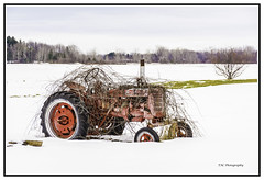 RETIRED! (TAC.Photography) Tags: nikon mccormick farmall internationalharvester tractor wildgrapevines entangled snow winter