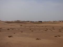 Dunas del Sahara (pattyesqga) Tags: morocco maroc marruecos sahara africa travel traveler travelphoto travelgirl femmetravel traveling travelingalone trip moments memories