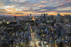 Tokyo golden sunset (Flutechill) Tags: tokyo tokyotower sky skyline building city cityscape goldenhour travel asia japan tourist landscape fujifilm fujixseries fujixt1 xf1024